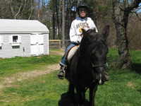 horse riding camp